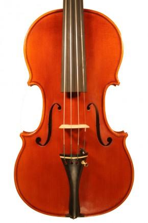 Violini - image